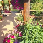 Beautiful gardens at log accommodation in Golden, BC