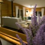 Relax at our cozy bed and breakfast in Golden, B.C